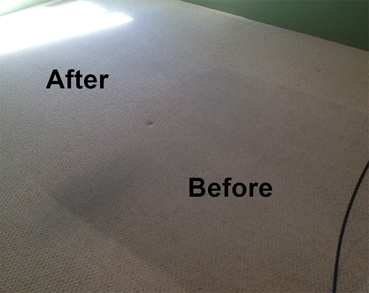Crown Carpet & Tile/Grout Cleaning Image # 16