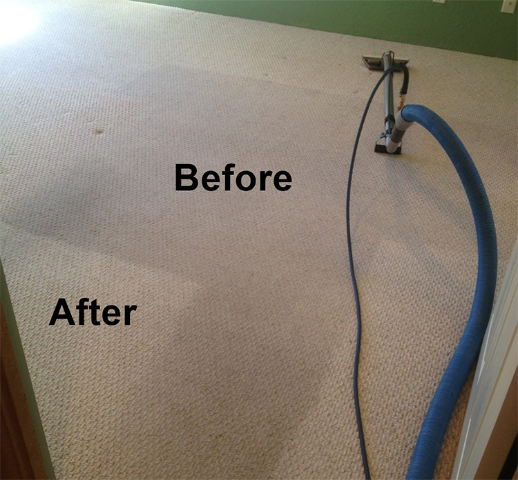 Crown Carpet & Tile/Grout Cleaning Image # 17