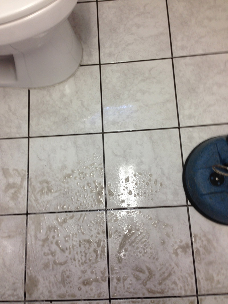 Crown Carpet & Tile/Grout Cleaning Image # 23