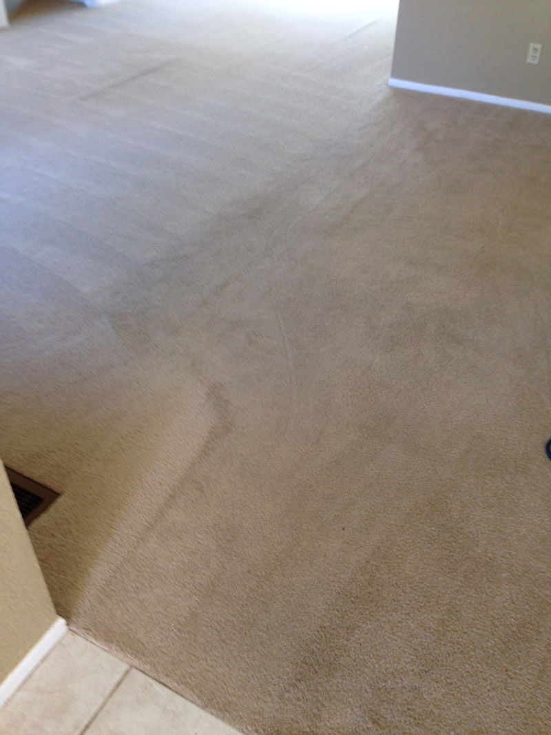 Crown Carpet & Tile/Grout Cleaning Image # 24