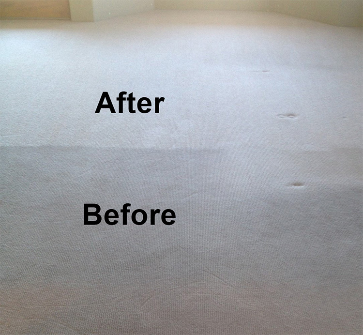 Crown Carpet & Tile/Grout Cleaning Image # 5