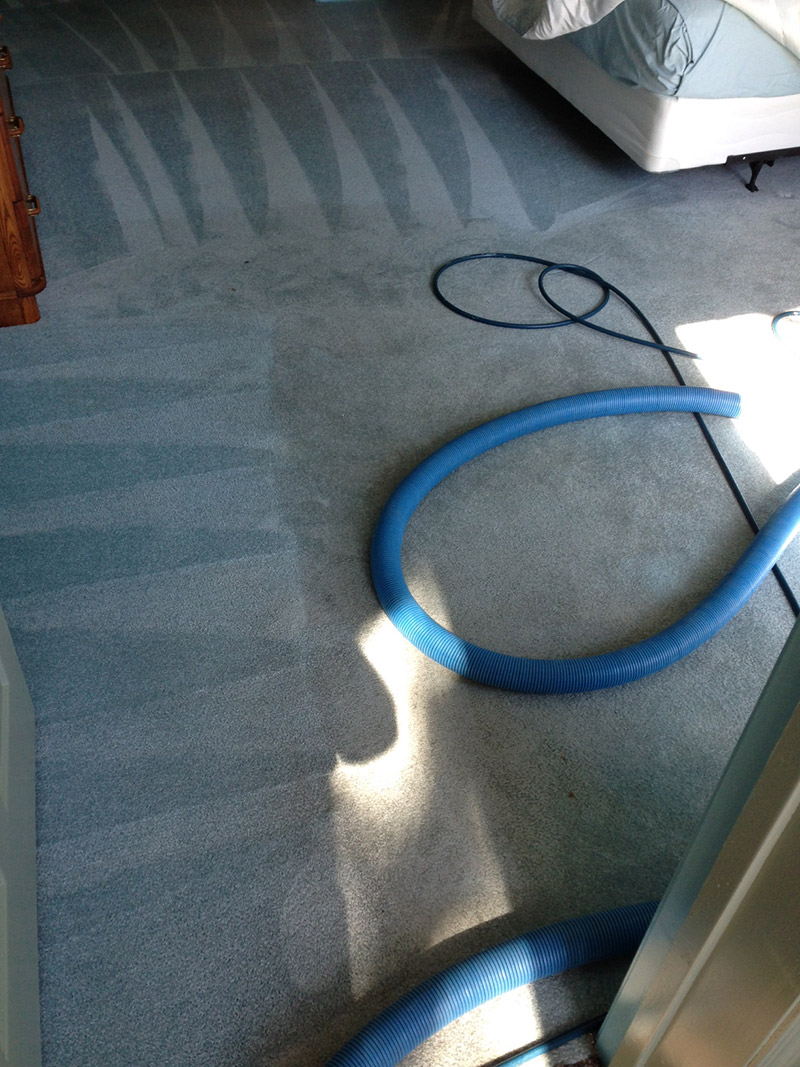 Crown Carpet & Tile/Grout Cleaning Image # 20