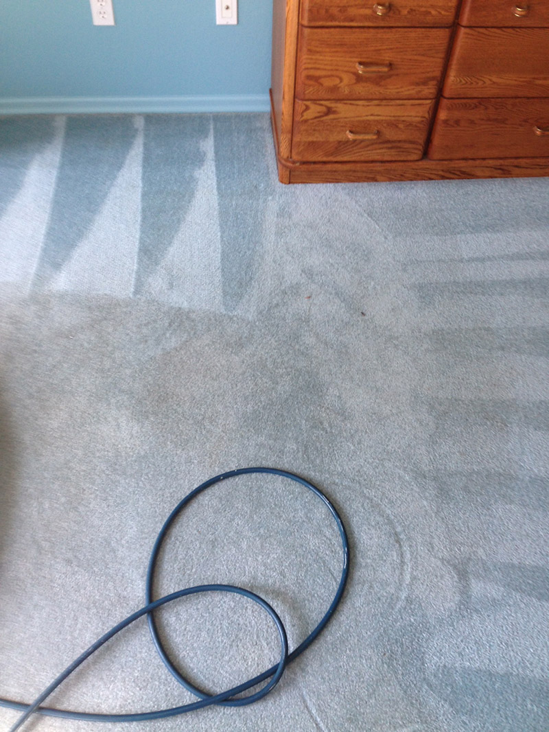 Crown Carpet & Tile/Grout Cleaning Image # 22